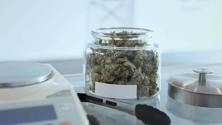 medicinale canabis - beleggen in wiet marihuana