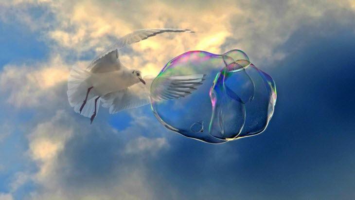 zeepbel betekenis en voorbeeld met uitleg
