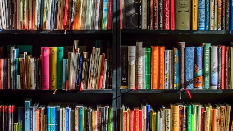 Download Boeken van Michel Van Oostvoorn