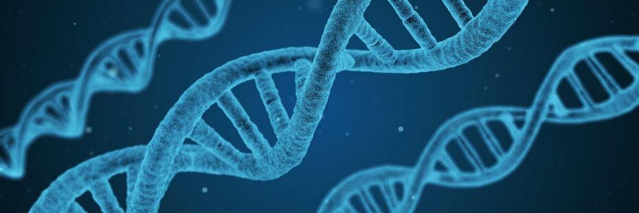 Beste biotech aandelen